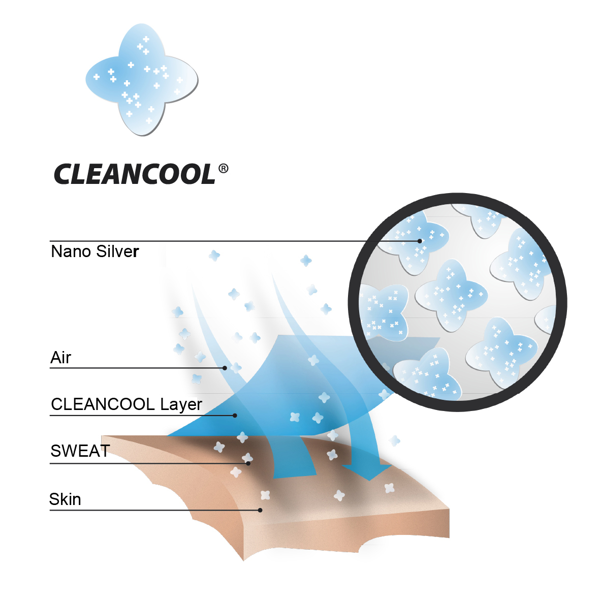 cleancool_chart_english